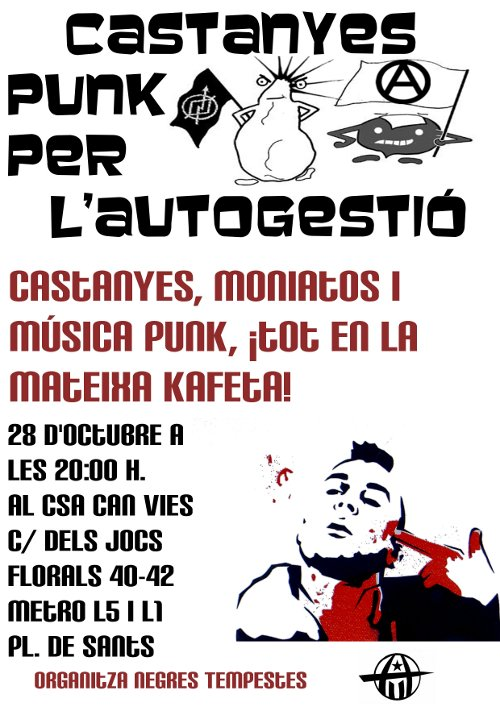 Catanyada Punk al CSA Can Vies